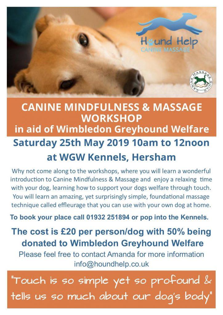 Canine Mindfulness Workshop