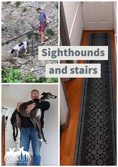 Sighthounds and Stairs